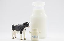 愛知県牛乳商業組合