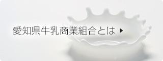 愛知県牛乳商業組合とは